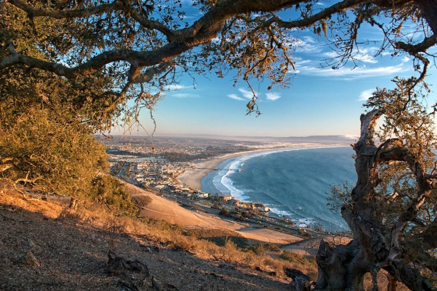 New Hiking Trails at Pismo!