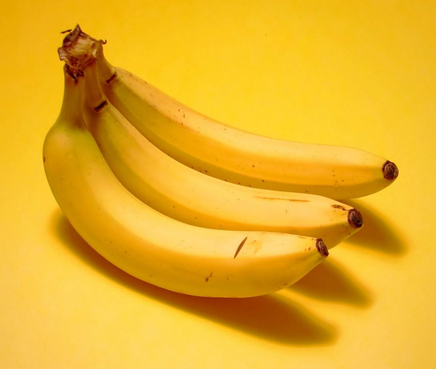 The Future of Fabric: Bananas