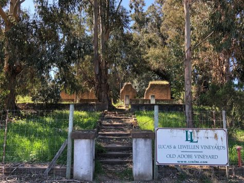 Mysterious Adobe Vineyard Ruins in Sisquoc